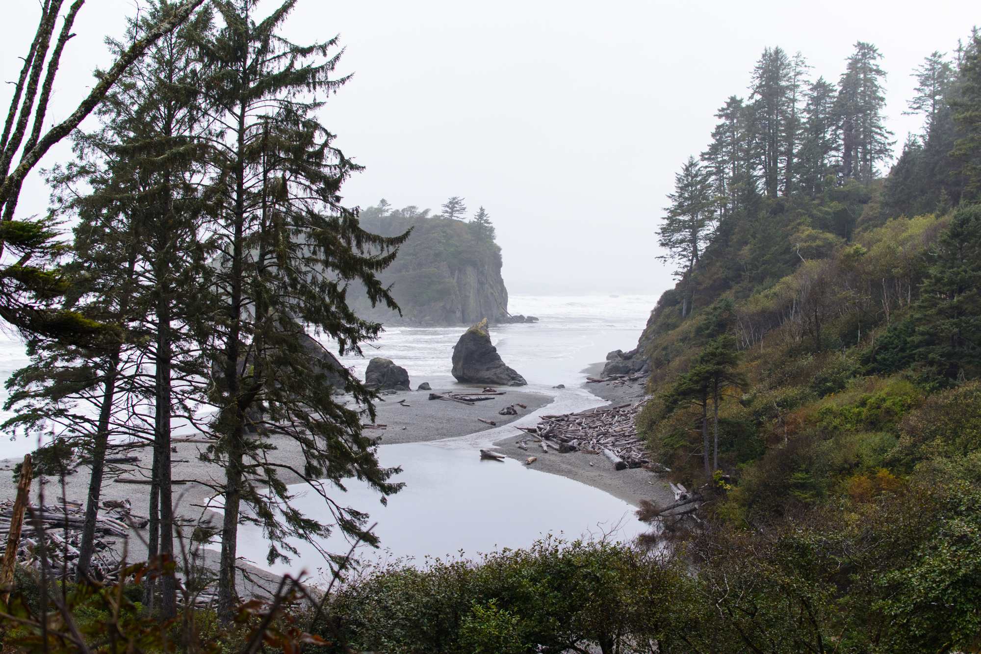 The Pacific Northwest Coast